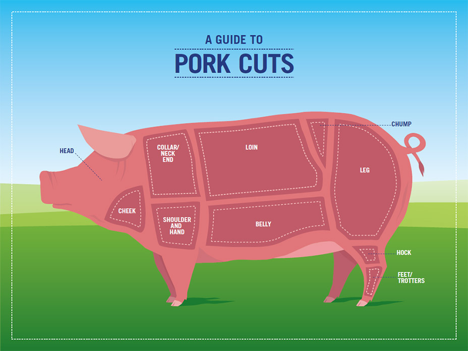 Pork cuts guide