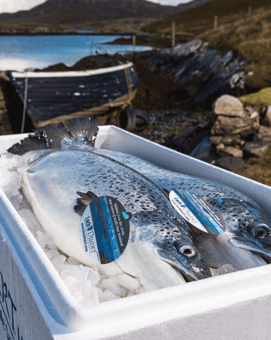 View the Fish loch duart whole salmon online at Campbells Meat, an award winning online butchers